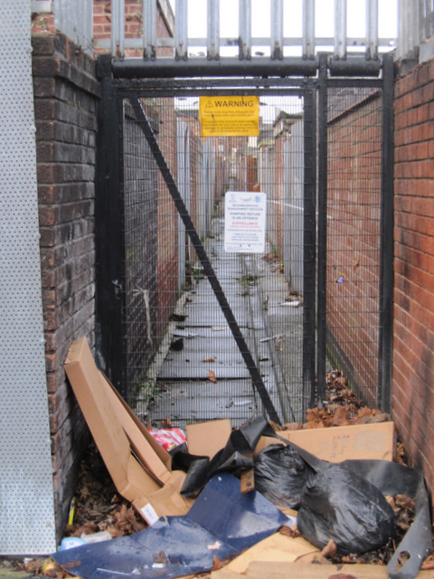Gated alley between Madryn Street and Powis Street, Toxteth