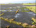TM1488 : Tibenham airfield (Norfolk Gliding Club) - runways crossing by Evelyn Simak