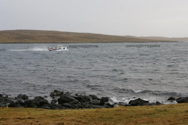 Boat passing Knowe of the Wick, near Heogland