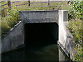 SO9163 : Canal tunnel portal  east of Droitwich, Worcestershire by Roger  Kidd