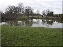SJ3688 : Prince's Park Lake by John S Turner