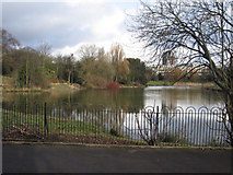 SJ3688 : The south-west corner of Prince's Park lake by John S Turner