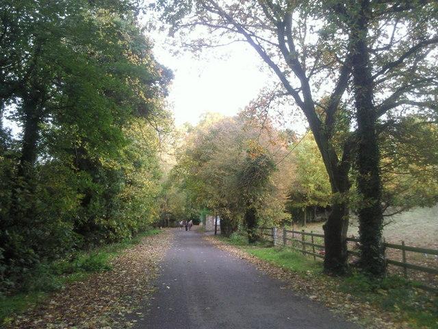Kemnal Road, Chislehurst