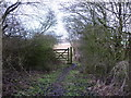 TA3224 : A footpath heading to the A1033 by Ian S