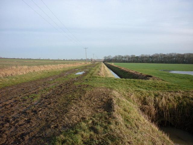 A bridleway to Patrington