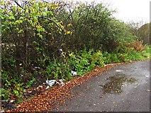 NS7671 : Layby, Hulks Road by Richard Webb
