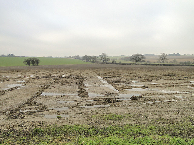 Norfolk scenery at a muddy field entrance