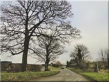 TF9740 : Road into Binham Westgate by Adrian S Pye