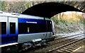 J4079 : Bridge, Marino station (2) by Albert Bridge