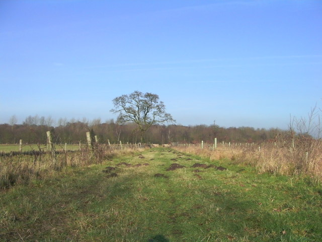 Track leading to Normandy Carr