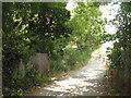 TQ3867 : St. Dunstan's Lane, BR3 by Mike Quinn