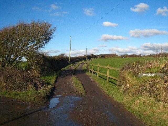 The track leading to Priske Farm