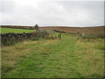NZ7605 : Track  from  Broad  Leas  Farm  onto  Glaisdale  Low  Moor by Martin Dawes