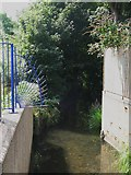 TQ3874 : The Quaggy River north of Manor Park by Mike Quinn