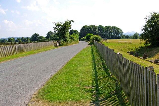Wroxeter Roman City (05) - public road through the site