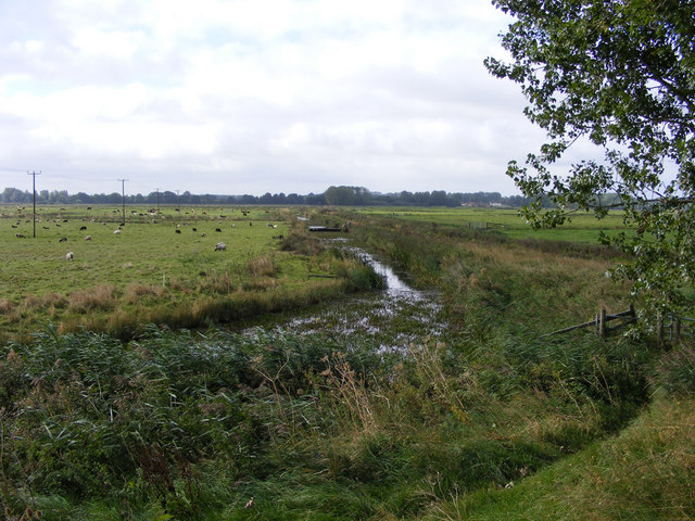 Drainage channel on Claxton Marsh
