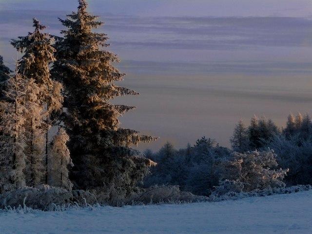 Sunrise on Gleniffer Braes
