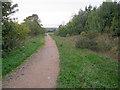 SK4661 : Path through Silverhill Wood by Trevor Rickard