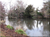 TQ4265 : Lake south of Hollydale Recreation Grounds by Mike Quinn