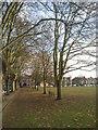 TQ1674 : Moor Mead, Twickenham by Marathon