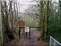 TQ8187 : Dodds Grove by terry joyce