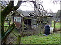 SJ8179 : Shed on its last legs at Ivy House Farm, Mobberley by Anthony O'Neil