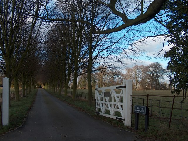 Driveway to Boreas Hall by Neil Theasby