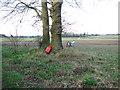 TM0587 : Bird scarer beside Gipsies' Lane by Evelyn Simak