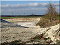 TL5654 : Wilbraham Chalk Quarry by John Sutton