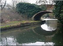 SU7451 : Colt Hill Bridge by Graham Horn