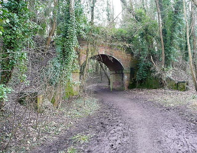 Footpath under the former railway line
