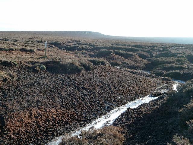 Frozen stream on Harden Moss
