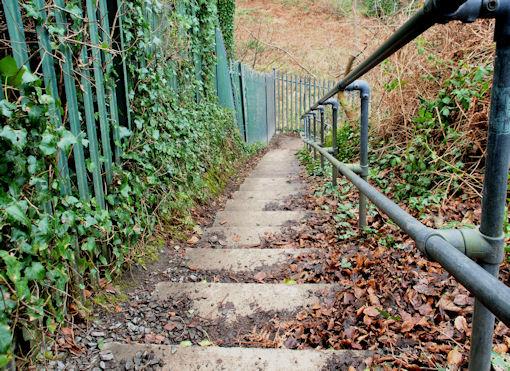 Steps near Helen's Bay (2)