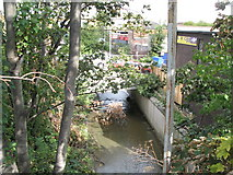 TQ3772 : The River Ravensbourne north of Randlesdown Road, SE6 by Mike Quinn