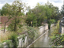 TQ3772 : The River Ravensbourne by Franthorne Way, SE6 (6) by Mike Quinn