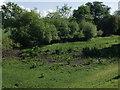 SU8886 : Cock Marsh Pond by Mick Crawley