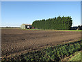 TF4005 : Holly Oak Farm by Hugh Venables