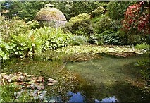 SX4268 : Fishpond and Dovecote, Cotehele by Roger Lombard