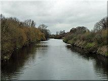 TQ3785 : River Lea at A106 bridge by Robin Webster