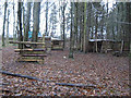 NZ1430 : Woodland Activity Centre Witton Castle by peter robinson
