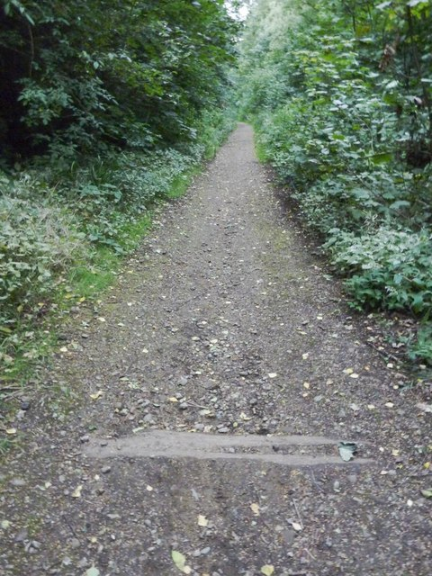 Middleton Woods Tramway Trackbed