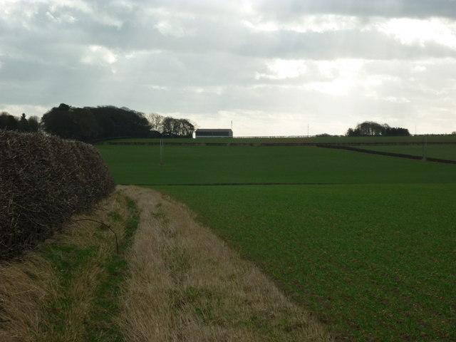 Looking south towards Barton Burrows