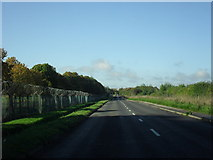 SP2907 : Road from Brize Norton to Carterton by andrew auger