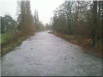 TQ2077 : Frozen lake in Chiswick Park by Marathon
