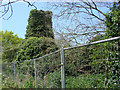 TG2532 : Antingham St Margaret's ruined church by Adrian S Pye