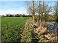TG0626 : Church Farm, Guestwick by Evelyn Simak