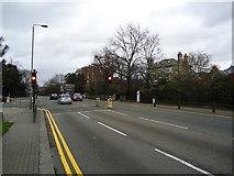 TQ2374 : Traffic lights, Putney Hill by Stacey Harris