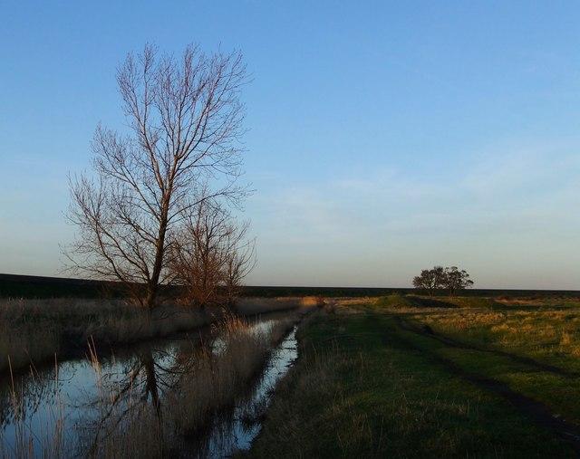 Marsh landscape near Lower Hope Point