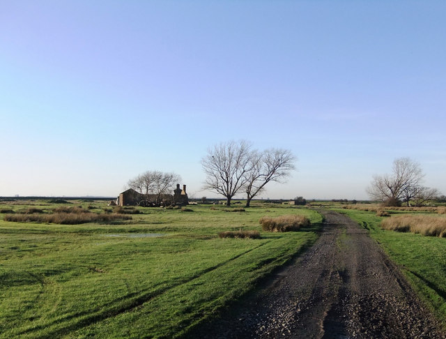 The old Point Gates Road and the Poplars, near Lower Hope Point, Cliffe Marshes
