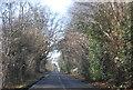 TQ6335 : B2169 towards Tunbridge Wells by N Chadwick